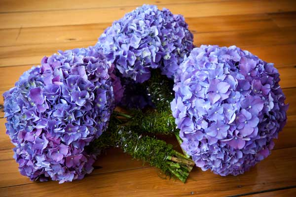 Доставка цветов донецк розита осени цветов оригинальные